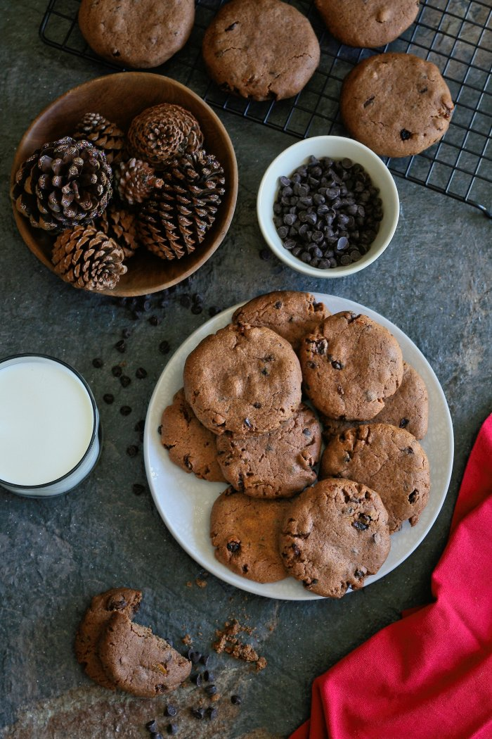 Chocolate chip cookie recipe with cinnamon.